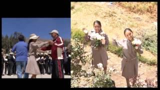 Ilusiones Perú - Con amor a San Luís Gonzaga (vol.II)