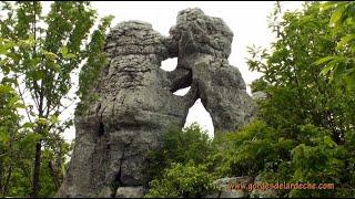 Ardèche - Bois de paiolive