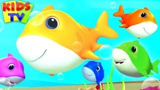 BABY SHARK SONG | Baby Shark Doo Doo Doo | Nursery Rhymes for Kids & Baby Songs | Junior Squad