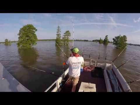 Fishing At Packs Landing