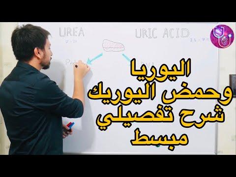 ما الفرق بين اليوريا وحمض اليوريك ؟ Urea Vs Uric Acid  وما هو النقرس ؟