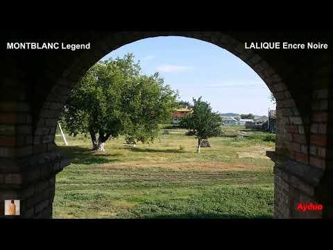 Мнение о MONTBLANC Legend и LALIQUE Encre Noire