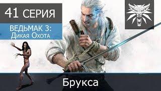 """Ведьмак 3: Дикая охота (ИИГ) - 41 серия """"Брукса"""""""""""