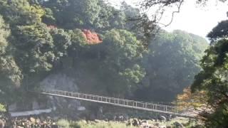 宮崎県都城市にある関之尾滝(せきのおのたき)の右岸岩壁に掘られた句 ...