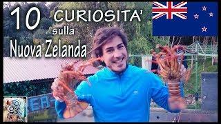 10 Curiosità sulla Nuova Zelanda
