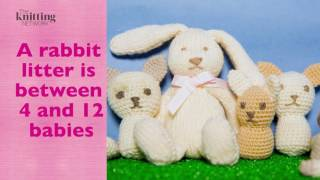 Knitted Rabbit With Amigurumi Crochet Cats (The Knitting Network WTD029 & WTD011)