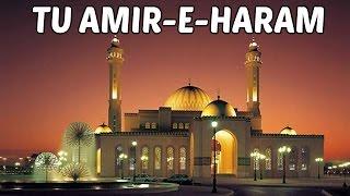Hit Naat Collection | Tu Amir-E-Haram  | Muzaffar Warsi  Naats