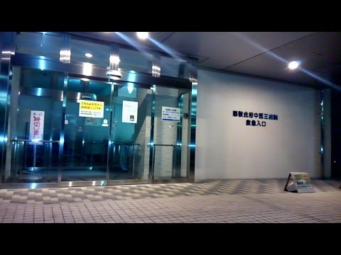 【Emergency Hospitals Issue in Tokyo】東京、救急病院事情