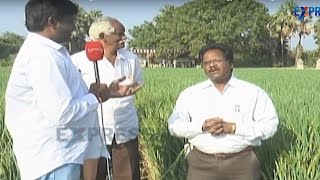 Exclusive interview with Dr.Paladugu about new rice varieties and latest technology in rice farming