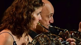 Divertimento opus 59 for two horns and piano by Kalliwoda