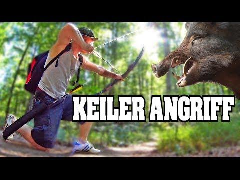 Rennender Keiler - 3D Bogenschießen
