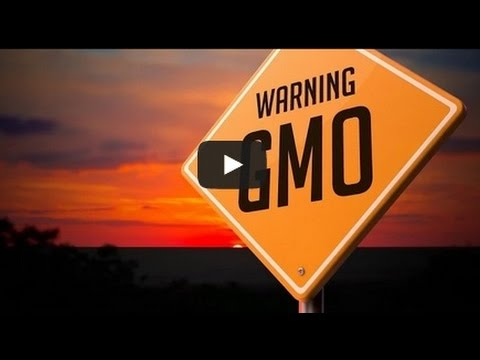 The Ugly Truth About GMO's