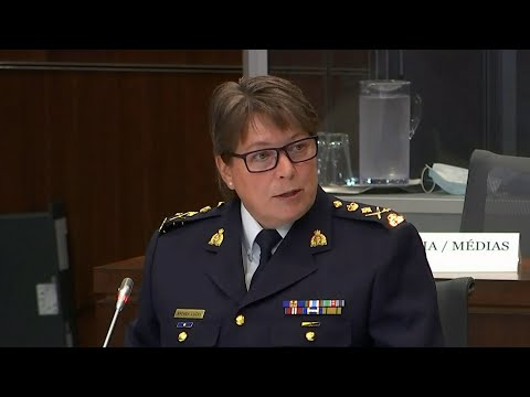 What does Brenda Lucki's answer for examples of systemic racism in RCMP say about the commissioner?