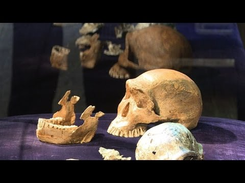 Fossils suggest hominids may have lived alongside modern humans