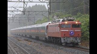 青い森鉄道 EF81形+E26形 9011レ「カシオペア紀行」 清水川駅通過 2019年6月16日