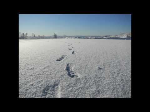footsteps in the snow sound effect, white noise for ambience