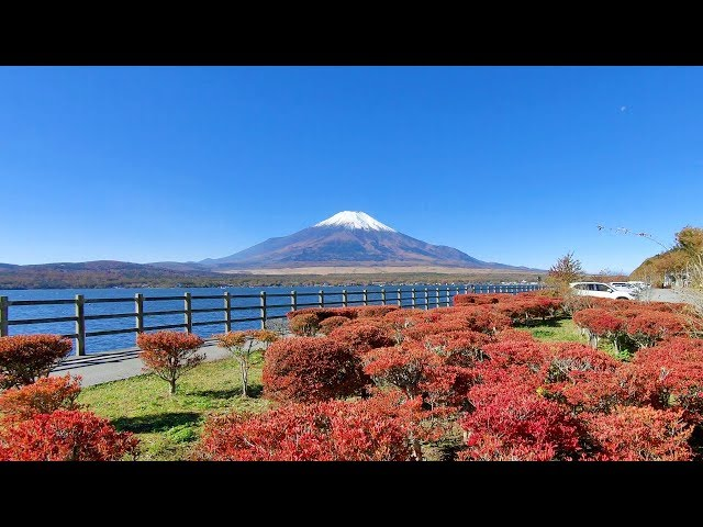 2018.10.30 [4K] 冠雪の富士山 / 紅葉始まる山中湖より Mt.Fuji_Yamanakako_Autumn leaves