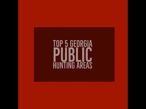 Top 5 Georgia Public Hunting Areas