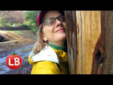 Hike to the Waterfall Part 1 | Santa Monica Mountains | Vlog