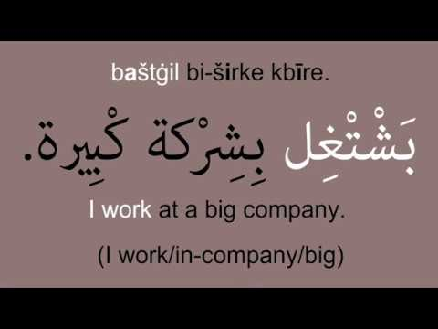 Essential Levantine Arabic Verbs: To Study, To Learn, To Speak, To Live, To Work