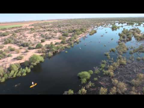 Delta Dawn: Colorado River Delta by SUP