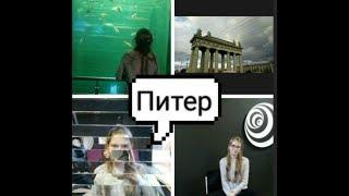 Питер музей иллюзиум, океанариум, кафе. Поездка в Санкт- Петербург. Морские котики и медведи.