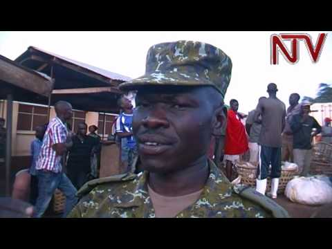 UPDF soldiers impound tonnes of immature fish