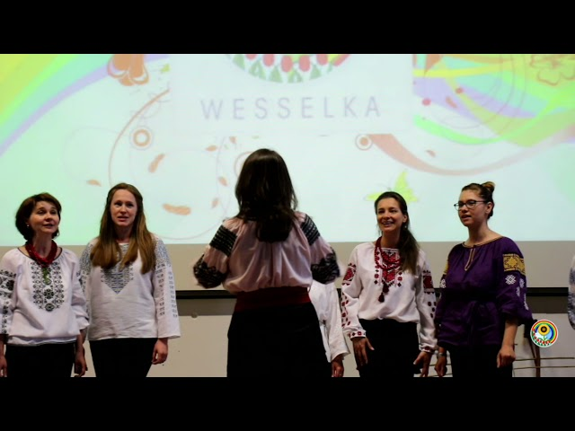 2016 05 04 Виступ на ювілейному концерті українськоі школи