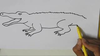 How to draw a Crocodile  - in easy steps for children, kids, beginners