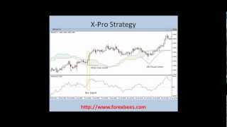 X-Pro Forex Trading Strategy