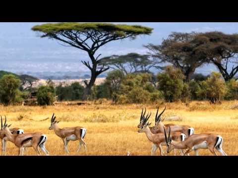 Climate of Kenya | KenyanSandals.com