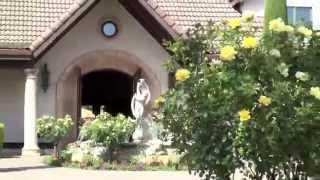 Villagio Spa and Resort Wedding Preview : Napa Valley, Yountville, CA,