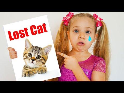 Diana Lost her Cat