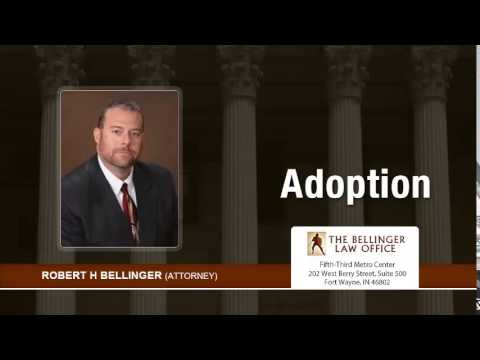What Can People Do To Expedite The Adoption Process In Fort Wayne, Indiana? | (260) 428-2214