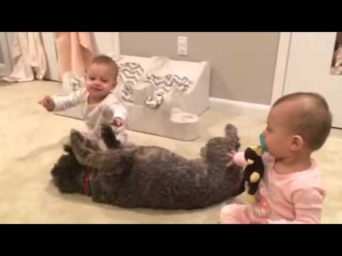 Morning fun with twins and dog