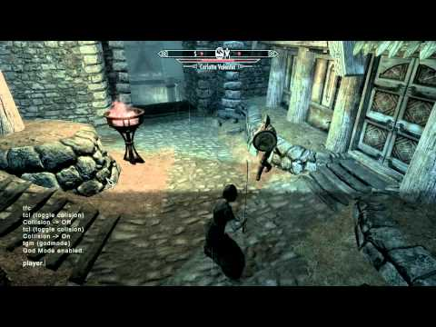 Skyrim - Basic cheat codes for PC (tons of cheats in description)