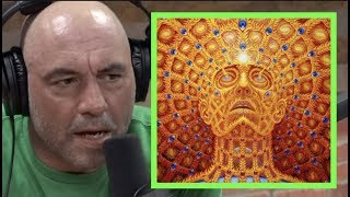 Joe Rogan Once Did DMT 3 Times in One Day