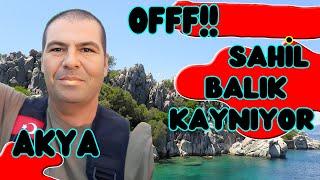 Akya, Balon, #Trakonya. Sahilde Ne Ararsan Var ( Balık Avı )