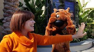 スクービー・ドゥーはユニバーサル・スタジオ・ハリウッドのヴェルマのガラスを試着します!null