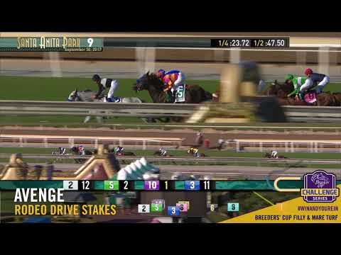 2017 Rodeo Drive Stakes - Avenge