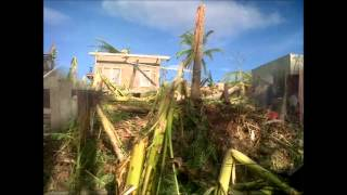 ST-YOLANDA - Aftermath San Remegio Tacup Cebu