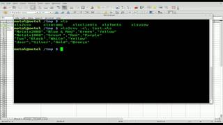 Excel to CSV with xls2csv - BASH - Linux