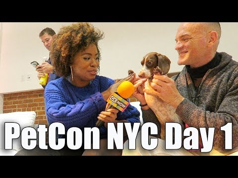 PETCON NYC DAY ONE -  vlog114
