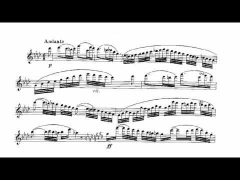 Carnival of Venice-flute for solo Shuxuan Wang