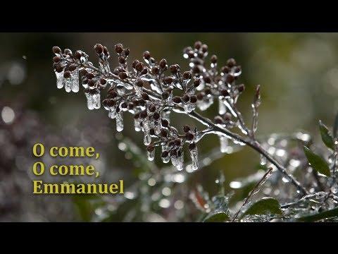 Advent Meditation: O come, O come, Emmanuel