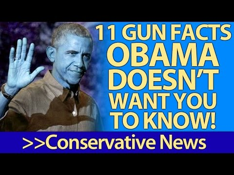 11 Gun Law FACTS Barack Obama and Liberals Don't Want You To Know