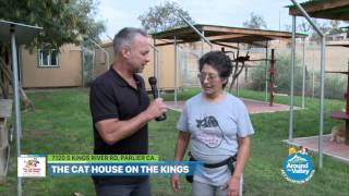 The Cat House on the Kings Tour Part 1
