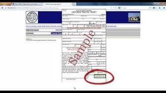 SC.gov Traffic Ticket Payment Tutorial