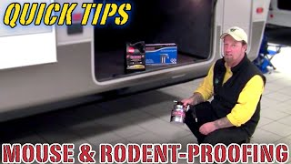 Mouse & Rodent-Proofing Your Camper | Pete