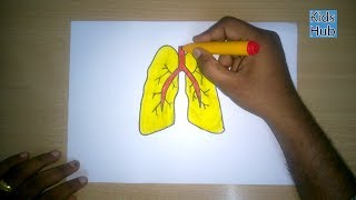 How to draw a Lungs | parts of the inner body | Easy step by step drawing for kids